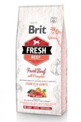 Brit Fresh Dog Beef & Pumpkin Puppy Large 2,5kg