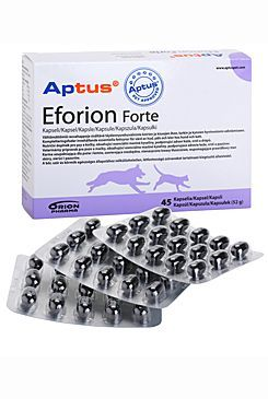 Aptus Eforion forte 45cps ORION Pharma Animal Health